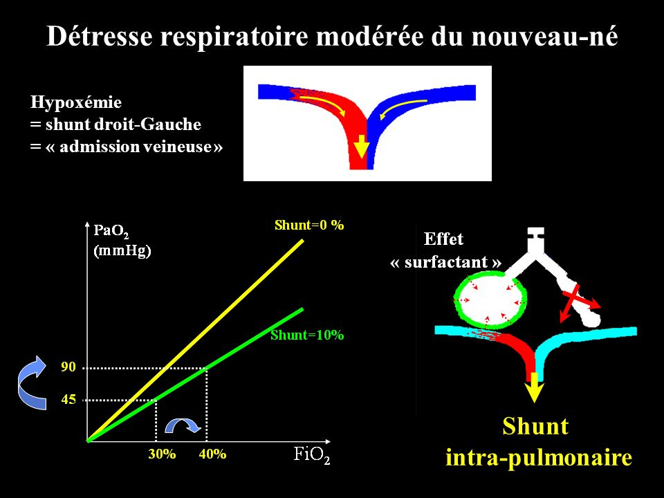 PVR Time pH Time Q Lung Time Effet transitoire de lalcalose respiratoire Abman SH, 1992