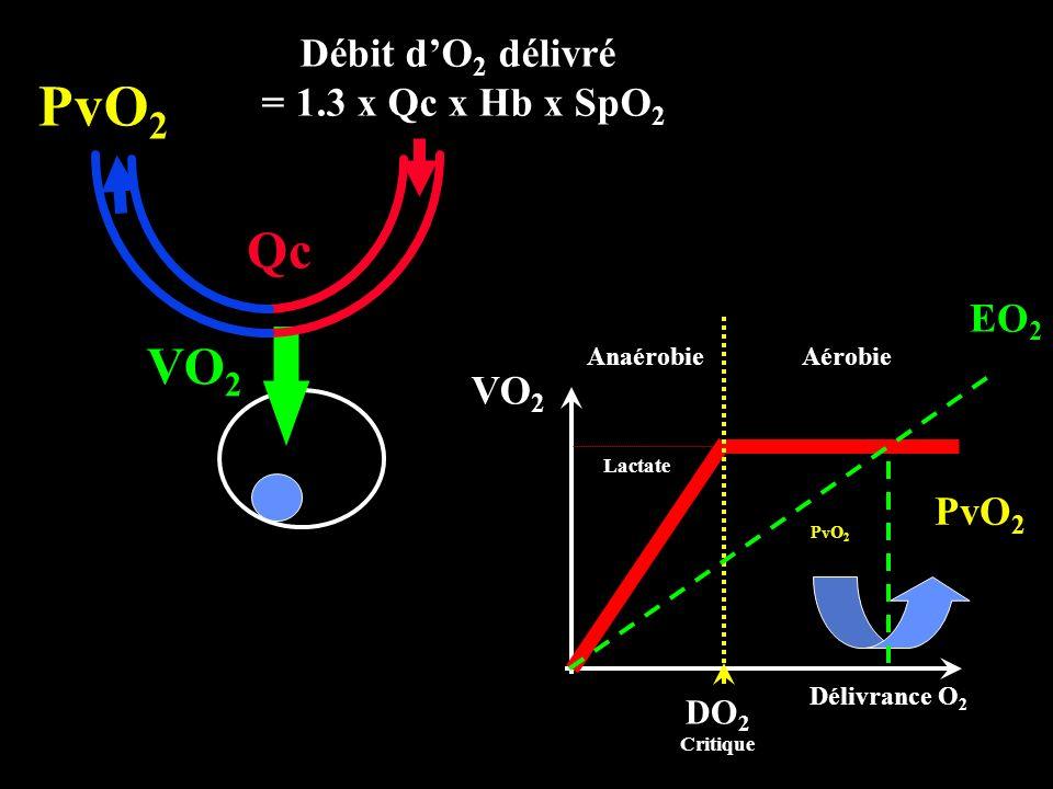 VO 2 Qc Débit dO 2 délivré = 1.3 x Qc x Hb x SpO 2 PvO 2 DO 2 Critique VO 2 Anaérobie Lactate Aérobie Délivrance O 2 EO 2 PvO 2