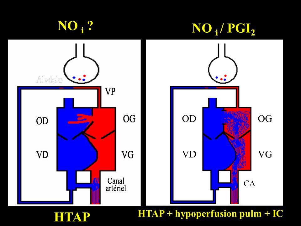 HTAP OD VD OG VG CA HTAP + hypoperfusion pulm + IC NO i ? NO i / PGI 2