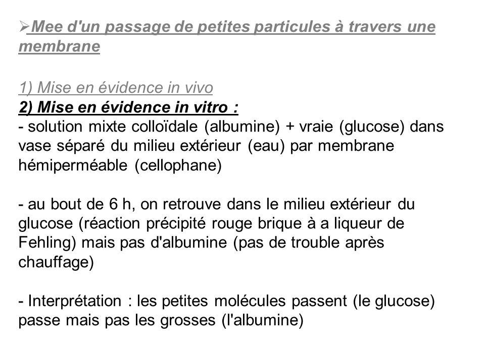 Mee d'un passage de petites particules à travers une membrane 1) Mise en évidence in vivo 2) Mise en évidence in vitro : - solution mixte colloïdale (
