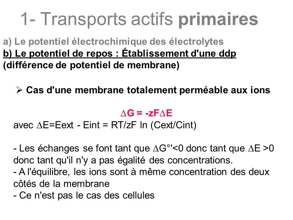 1- Transports actifs primaires a) Le potentiel électrochimique des électrolytes b) Le potentiel de repos : Établissement d'une ddp (différence de pote