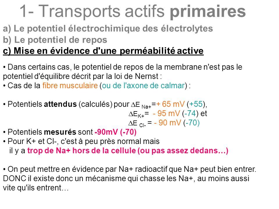 1- Transports actifs primaires a) Le potentiel électrochimique des électrolytes b) Le potentiel de repos c) Mise en évidence d'une perméabilité active
