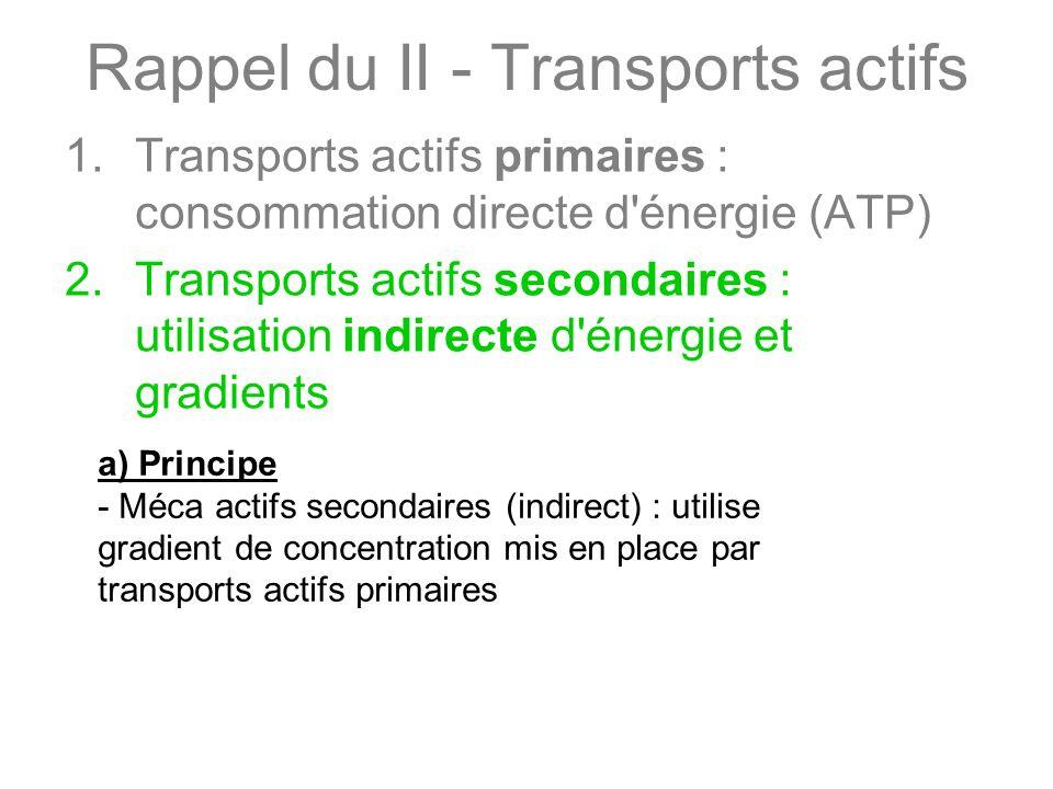Rappel du II - Transports actifs 1.Transports actifs primaires : consommation directe d'énergie (ATP) 2.Transports actifs secondaires : utilisation in