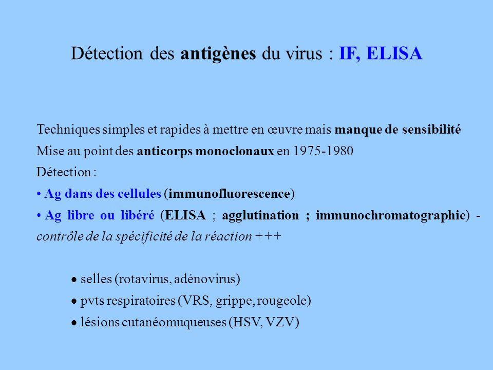 Détection des antigènes du virus : IF, ELISA Techniques simples et rapides à mettre en œuvre mais manque de sensibilité Mise au point des anticorps mo