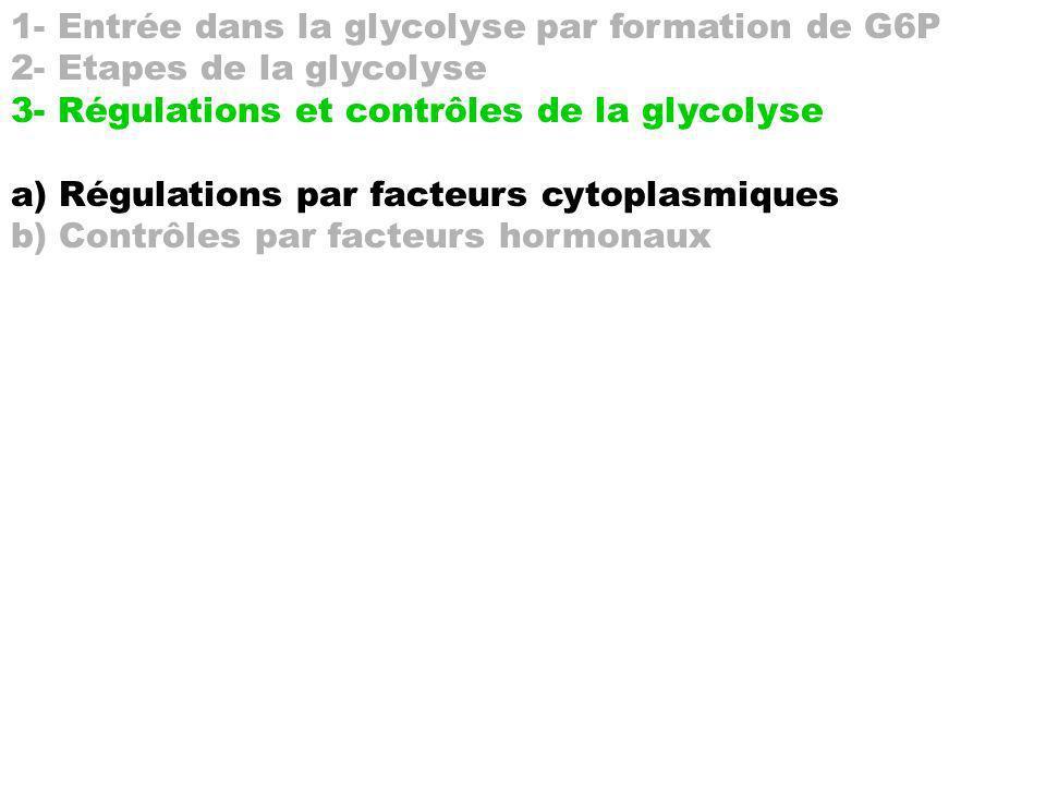 1- Entrée dans la glycolyse par formation de G6P 2- Etapes de la glycolyse 3- Régulations et contrôles de la glycolyse a) Régulations par facteurs cyt
