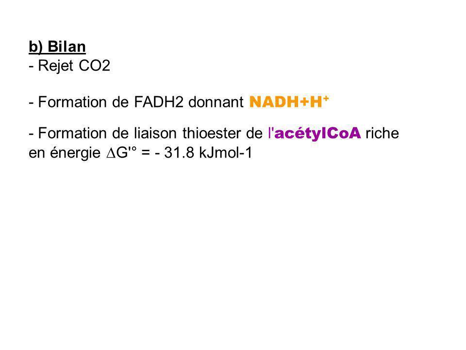 b) Bilan - Rejet CO2 - Formation de FADH2 donnant NADH+H + - Formation de liaison thioester de l' acétylCoA riche en énergie G'° = - 31.8 kJmol-1