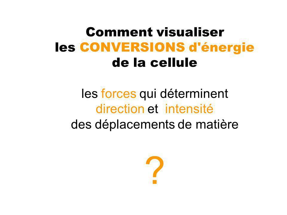 b) Modéle énergétique : transfert d e- selon les potentiels croissants - Diagramme