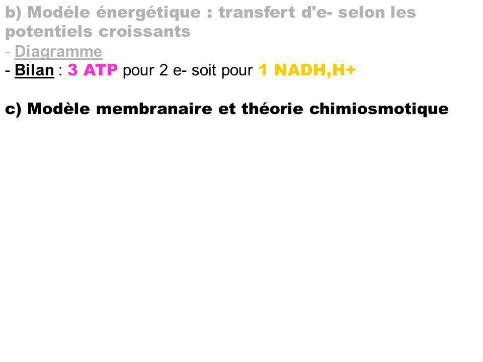 b) Modéle énergétique : transfert d'e- selon les potentiels croissants - Diagramme - Bilan : 3 ATP pour 2 e- soit pour 1 NADH,H+ c) Modèle membranaire