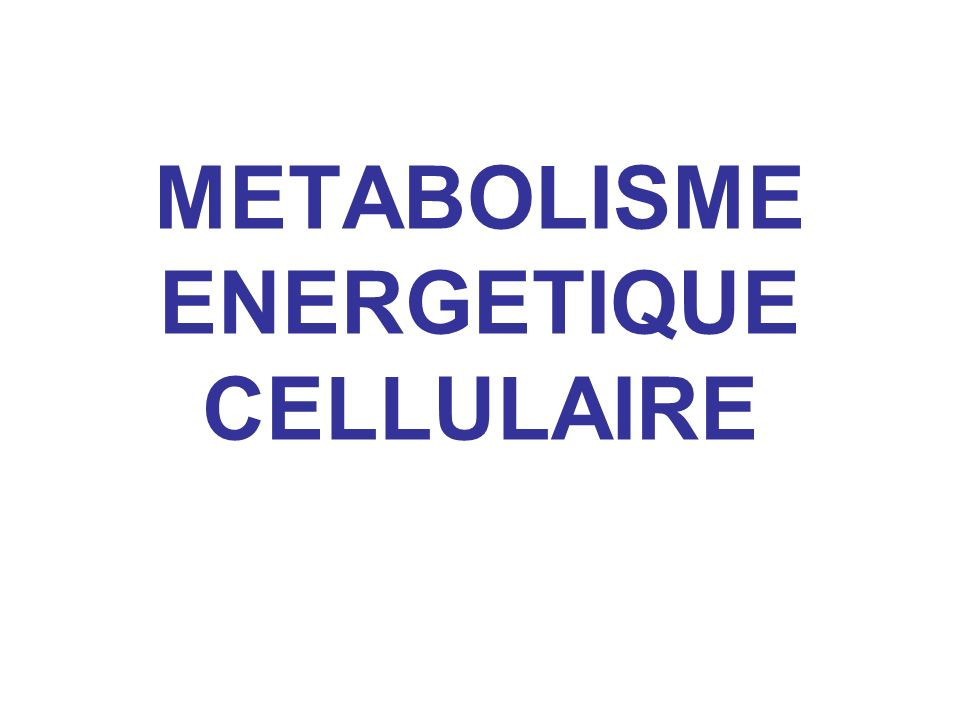 INTRODUCTION On a vu les mécanismes moléculaires des transports de matière (diffusion ou protéines transmembranaires, flux vésiculaire…)