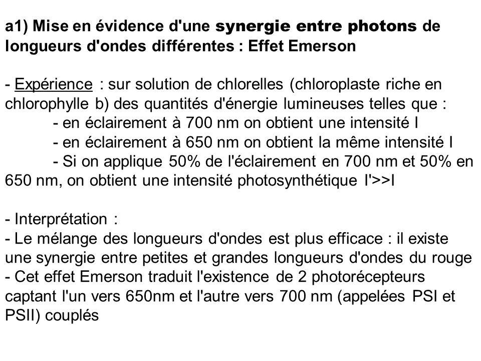 a1) Mise en évidence d'une synergie entre photons de longueurs d'ondes différentes : Effet Emerson - Expérience : sur solution de chlorelles (chloropl
