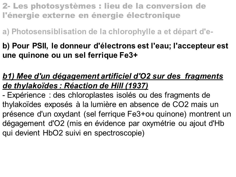 2- Les photosystèmes : lieu de la conversion de l'énergie externe en énergie électronique a) Photosensiblisation de la chlorophylle a et départ d'e- b