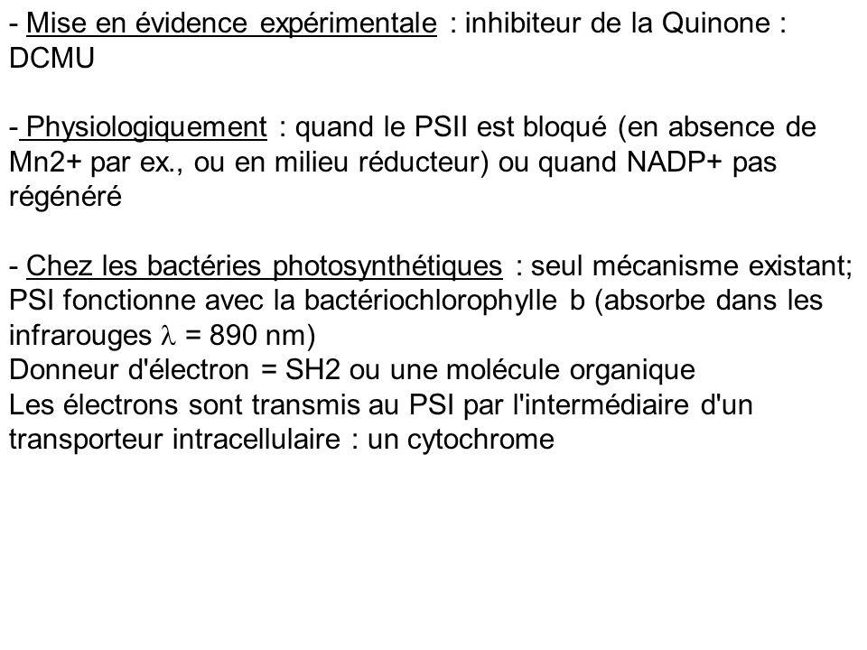 - Mise en évidence expérimentale : inhibiteur de la Quinone : DCMU - Physiologiquement : quand le PSII est bloqué (en absence de Mn2+ par ex., ou en m