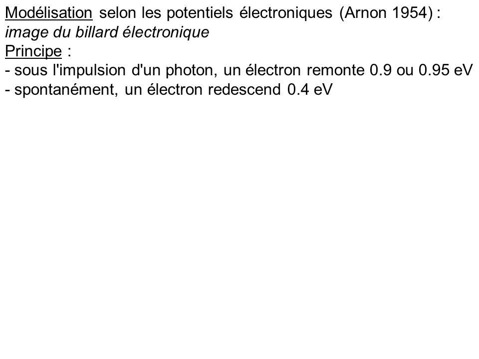 Modélisation selon les potentiels électroniques (Arnon 1954) : image du billard électronique Principe : - sous l'impulsion d'un photon, un électron re