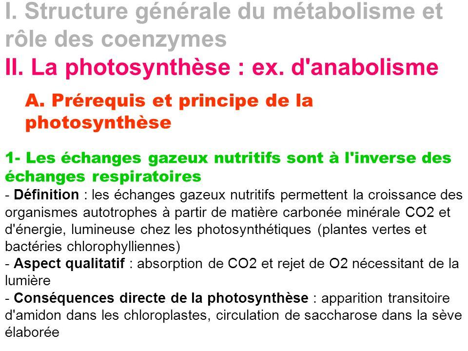 I. Structure générale du métabolisme et rôle des coenzymes II. La photosynthèse : ex. d'anabolisme A. Prérequis et principe de la photosynthèse 1- Les