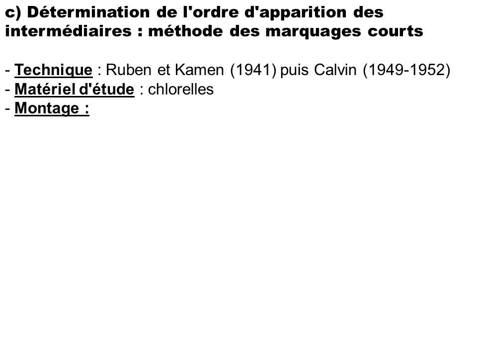 c) Détermination de l'ordre d'apparition des intermédiaires : méthode des marquages courts - Technique : Ruben et Kamen (1941) puis Calvin (1949-1952)