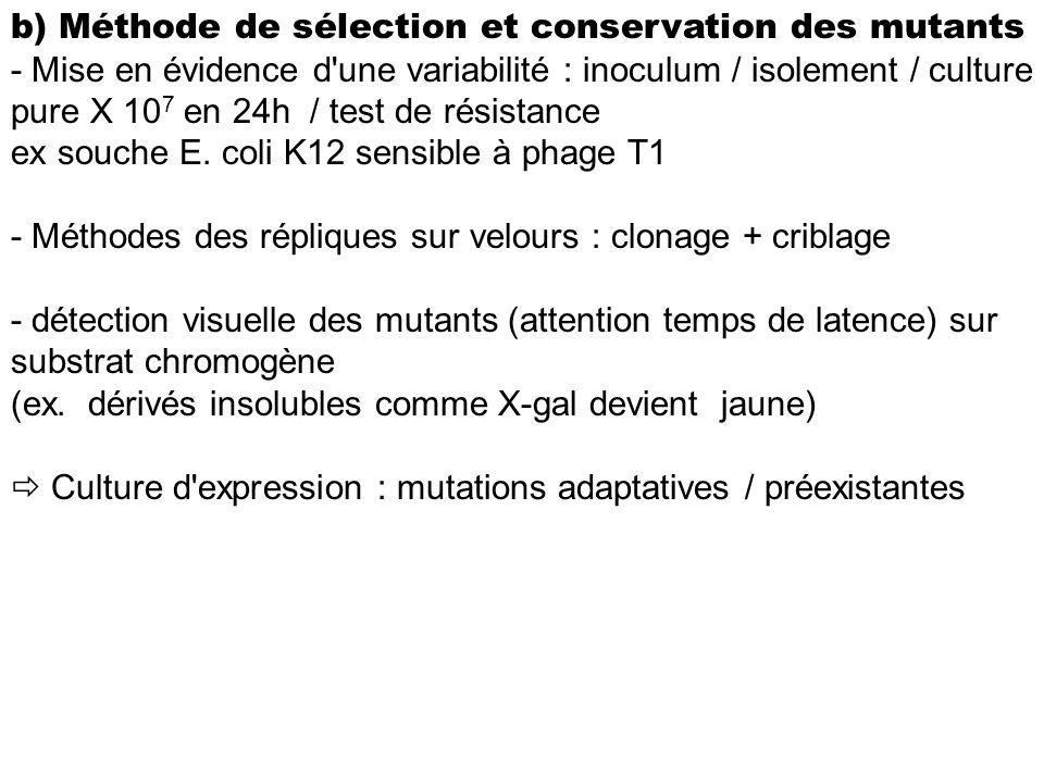 b) Méthode de sélection et conservation des mutants - Mise en évidence d'une variabilité : inoculum / isolement / culture pure X 10 7 en 24h / test de