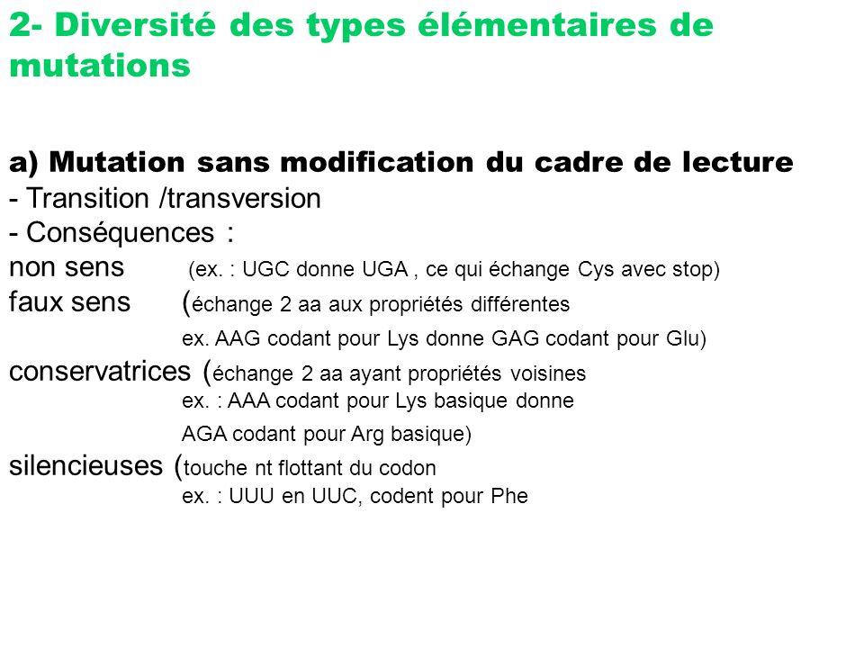 2- Diversité des types élémentaires de mutations a) Mutation sans modification du cadre de lecture - Transition /transversion - Conséquences : non sen