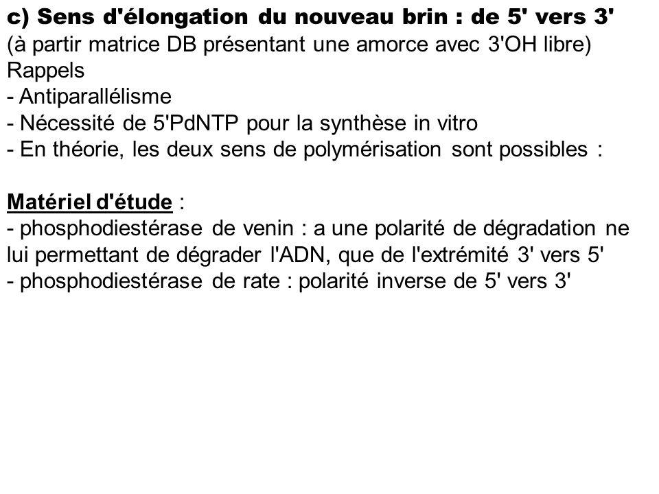c) Sens d'élongation du nouveau brin : de 5' vers 3' (à partir matrice DB présentant une amorce avec 3'OH libre) Rappels - Antiparallélisme - Nécessit