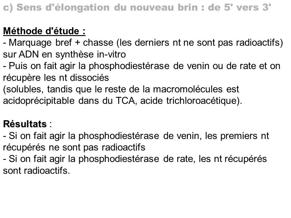c) Sens d'élongation du nouveau brin : de 5' vers 3' Méthode d'étude : - Marquage bref + chasse (les derniers nt ne sont pas radioactifs) sur ADN en s