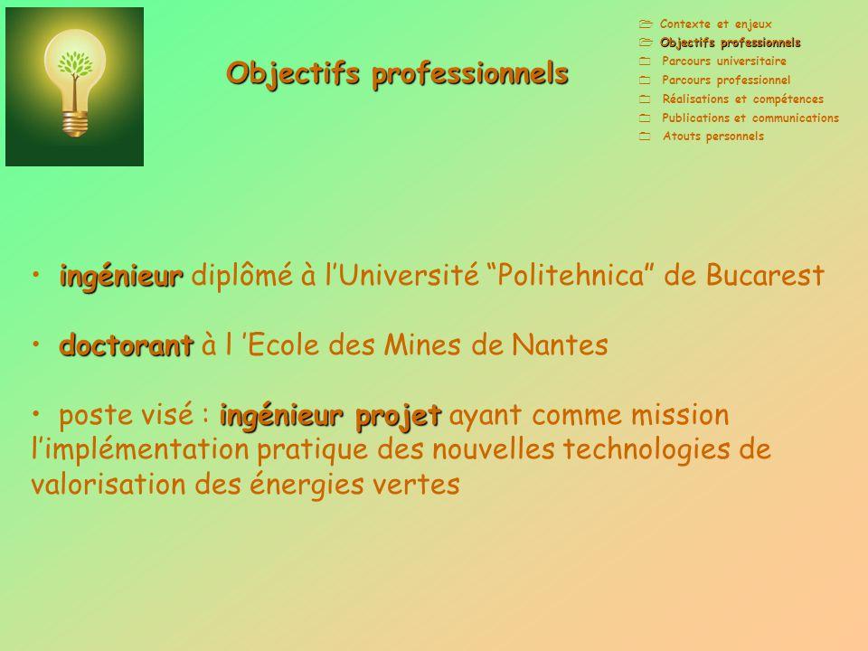 Objectifs professionnels Parcours universitaire Parcours professionnel Réalisations et compétences Publications et communications Atouts personnels in