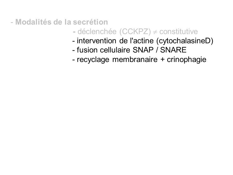 - Modalités de la secrétion - déclenchée (CCKPZ) constitutive - intervention de l'actine (cytochalasineD) - fusion cellulaire SNAP / SNARE - recyclage
