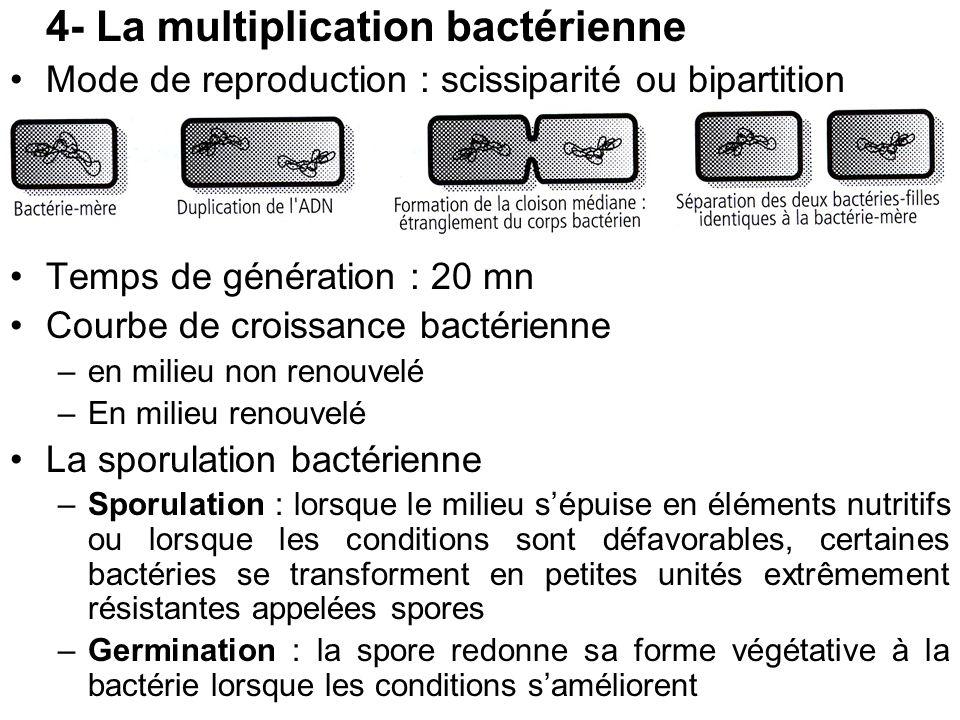 4- La multiplication bactérienne Mode de reproduction : scissiparité ou bipartition Temps de génération : 20 mn Courbe de croissance bactérienne –en m