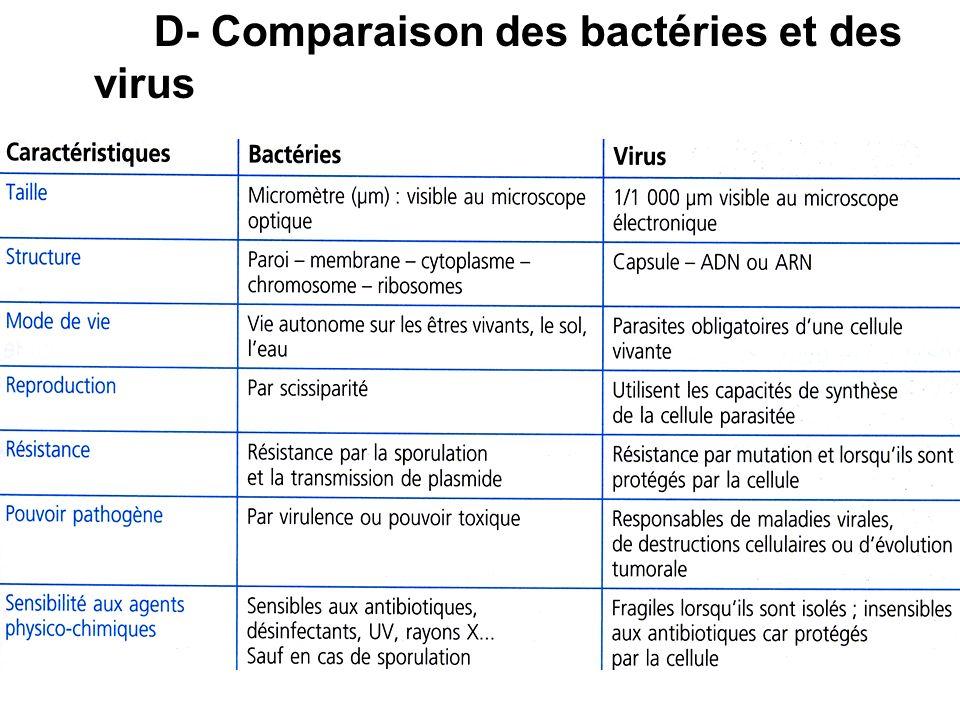 D- Comparaison des bactéries et des virus