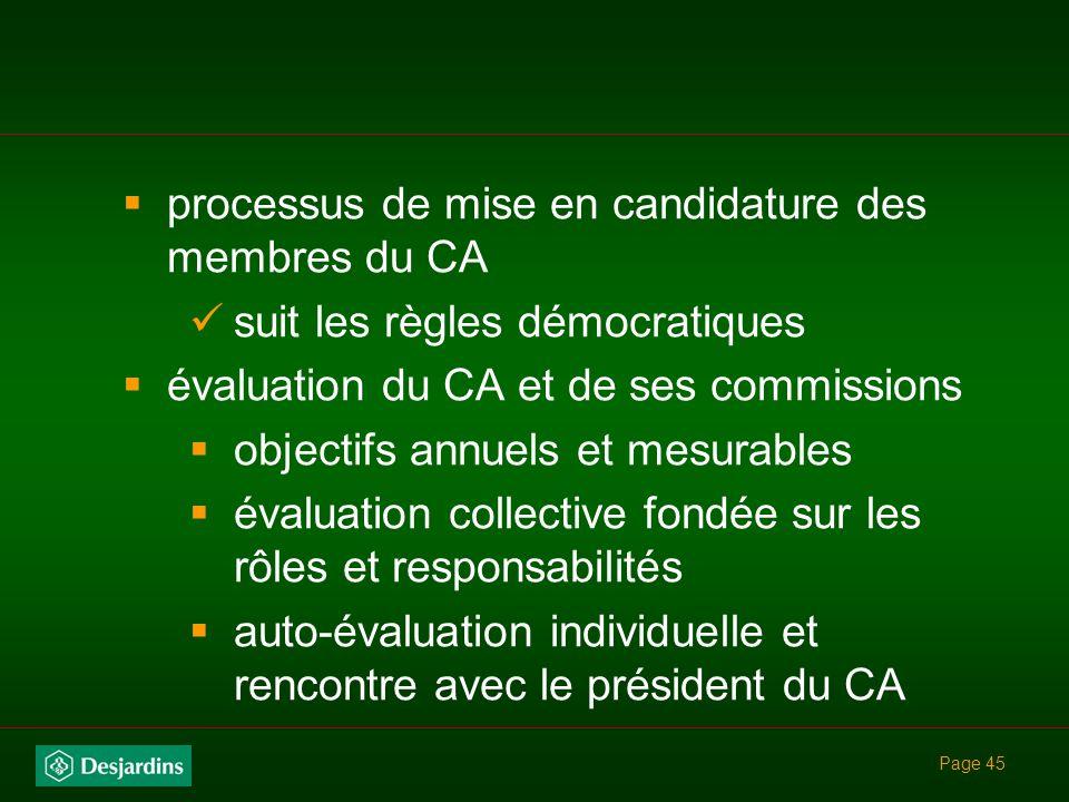 Page 44 Contient généralement : mandat du conseil dadministration dont les 7 zones de responsabilité composition du CA indépendance par rapport à la d