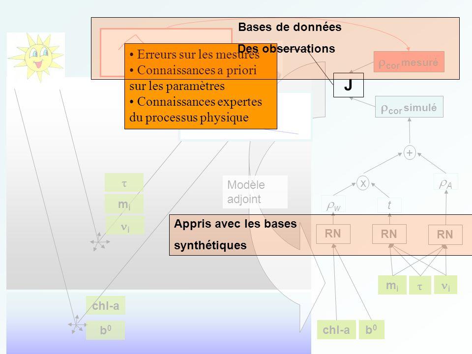 chl-a b0b0 b0b0 mimi i RN RN RN A w t x + cor simulé cor mesuré mimi i Modèle adjoint J Erreurs sur les mesures Connaissances a priori sur les paramèt