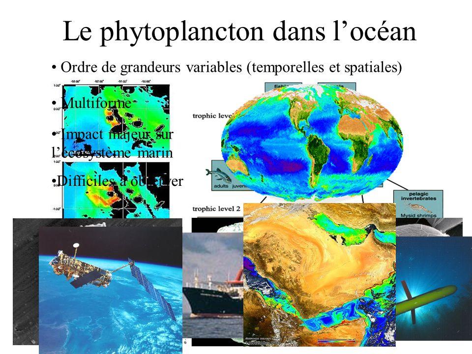 Le phytoplancton dans locéan Ordre de grandeurs variables (temporelles et spatiales) Multiforme Impact majeur sur lécosystème marin Difficiles à obser