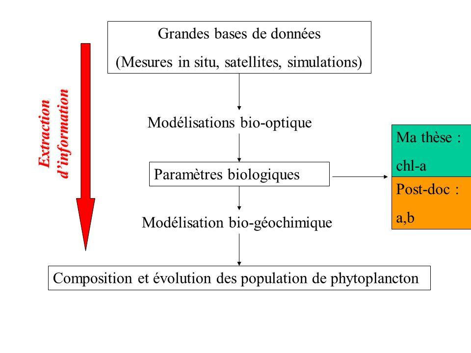 Grandes bases de données (Mesures in situ, satellites, simulations) Modélisations bio-optique Paramètres biologiques Modélisation bio-géochimique Comp