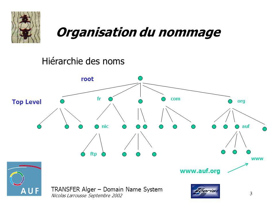 TRANSFER Alger – Domain Name System Nicolas Larrousse Septembre 2002 3 Organisation du nommage Hiérarchie des noms root Top Level com org auf fr www nic ftp www.auf.org