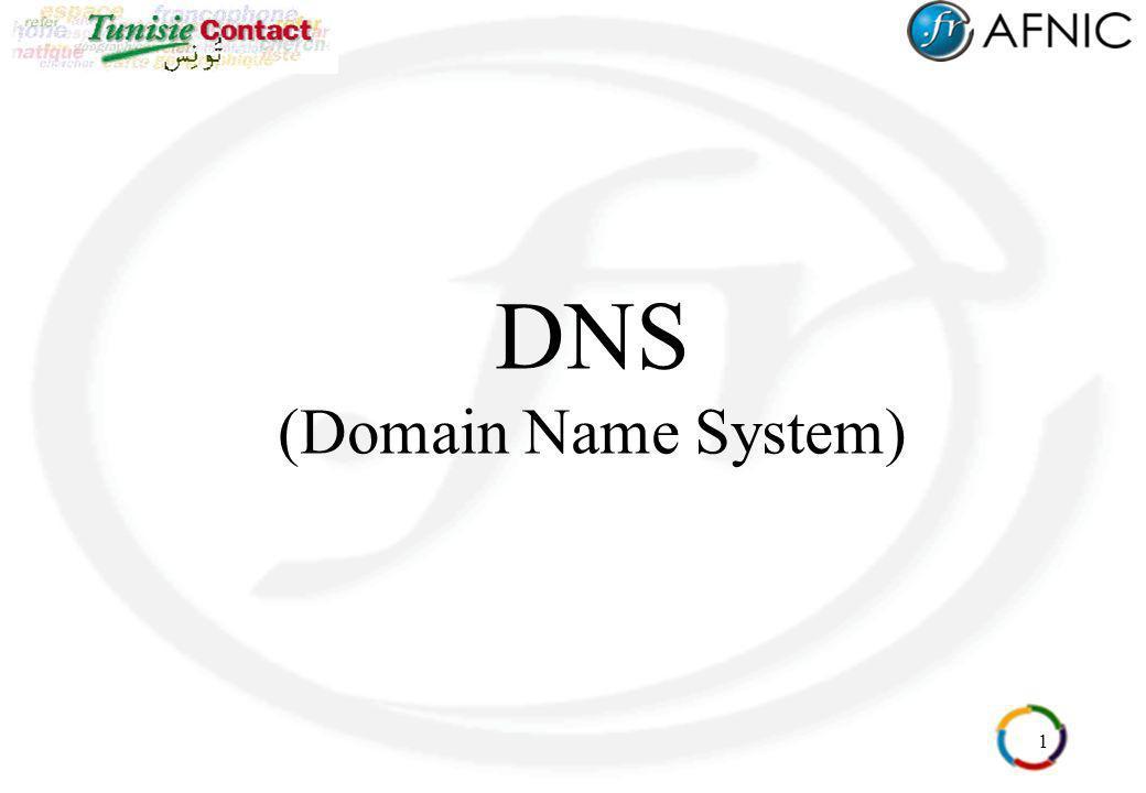 22 Arborescence (15) Racine : environ 15 bases de données (serveurs de nom) répartis dans le monde connaissant tous les serveurs des domaines de 1er niveau (.fr.arpa.com … ) serveur origine géré par l IANA / ICANN A.ROOT-SERVERS.NET serveurs miroirs de B.ROOT-SERVERS.NET à M.ROOT-SERVERS.NET