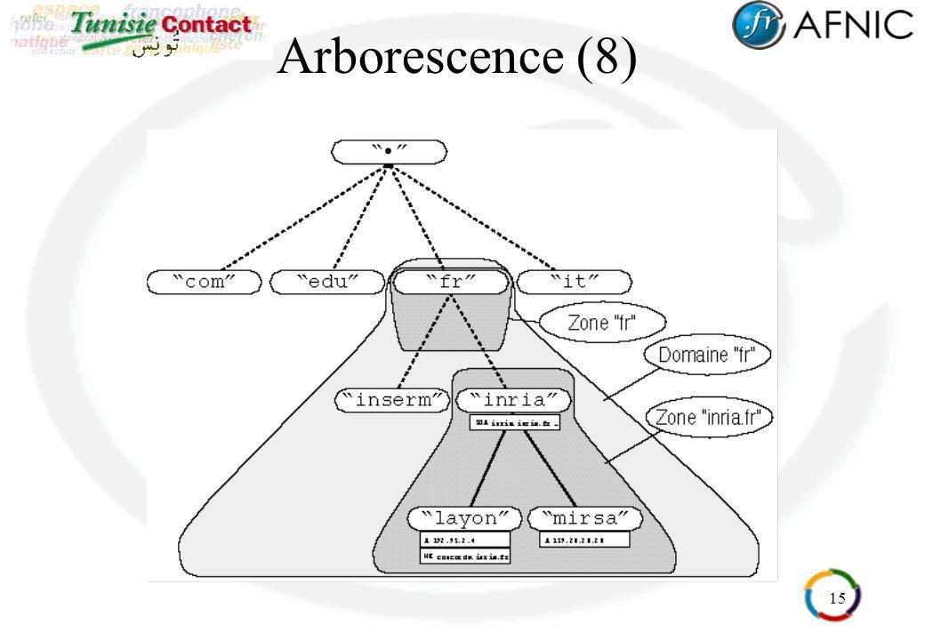 15 Arborescence (8)