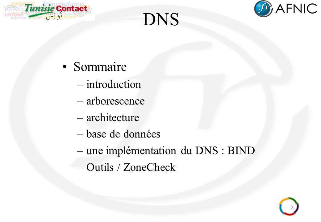 2 DNS Sommaire –introduction –arborescence –architecture –base de données –une implémentation du DNS : BIND –Outils / ZoneCheck