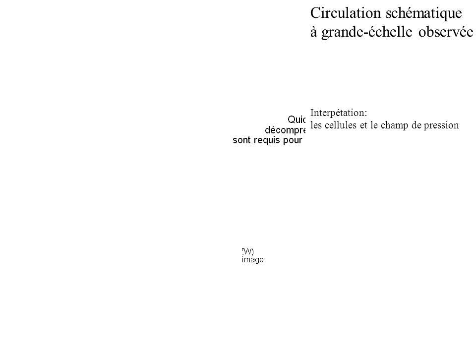Circulation schématique à grande-échelle observée Interpétation: les cellules et le champ de pression