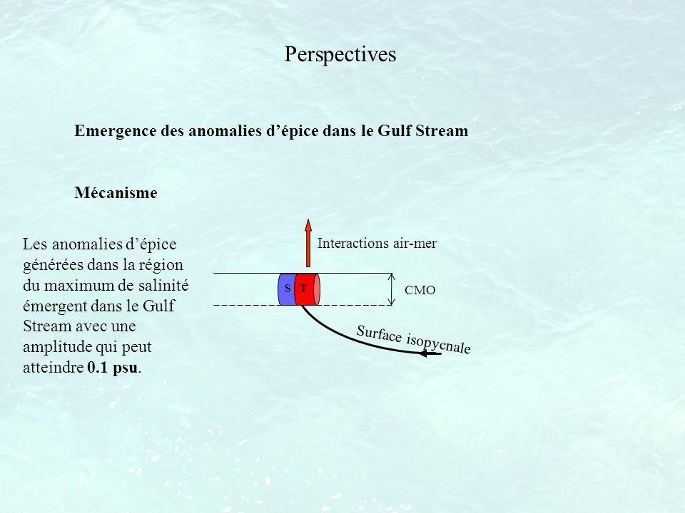 Perspectives Emergence des anomalies dépice dans le Gulf Stream Mécanisme S T Interactions air-mer CMO Surface isopycnale Les anomalies dépice générée