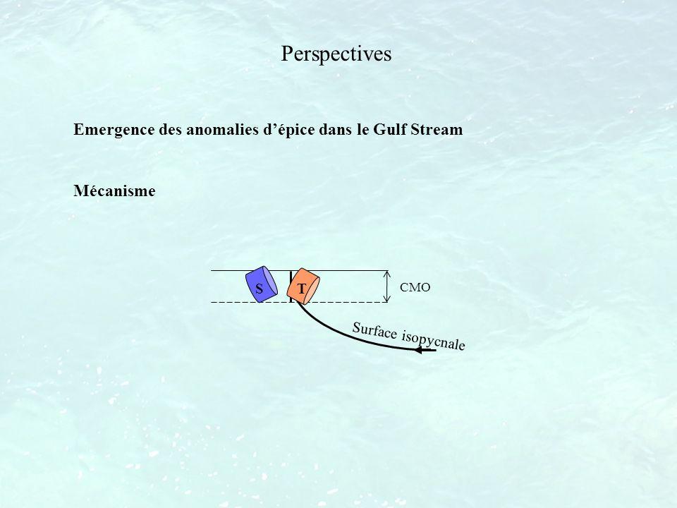 Perspectives Emergence des anomalies dépice dans le Gulf Stream Mécanisme S T CMO Surface isopycnale