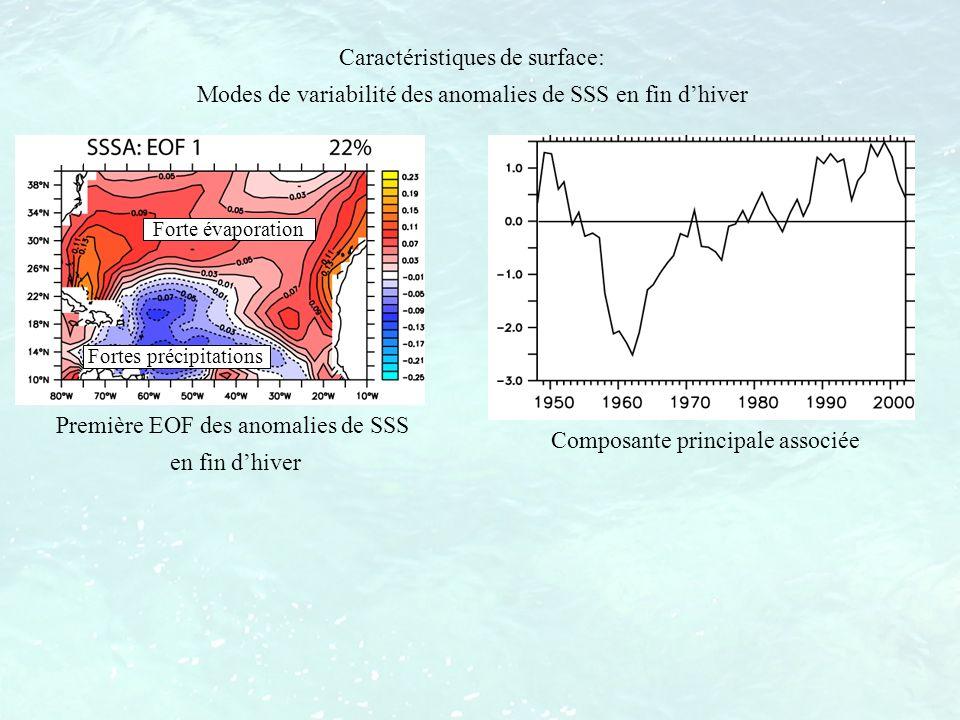 Fortes précipitations Forte évaporation Caractéristiques de surface: Modes de variabilité des anomalies de SSS en fin dhiver Première EOF des anomalie