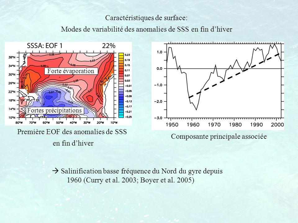 Fortes précipitations Forte évaporation Salinification basse fréquence du Nord du gyre depuis 1960 (Curry et al. 2003; Boyer et al. 2005) Caractéristi