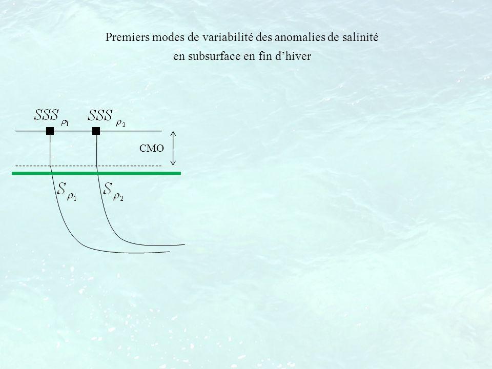 CMO Premiers modes de variabilité des anomalies de salinité en subsurface en fin dhiver