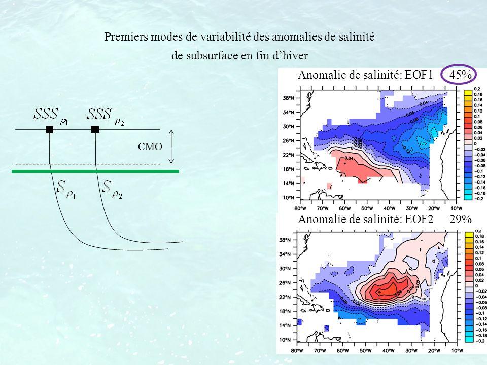 Premiers modes de variabilité des anomalies de salinité de subsurface en fin dhiver CMO Anomalie de salinité: EOF1 45% Anomalie de salinité: EOF2 29%