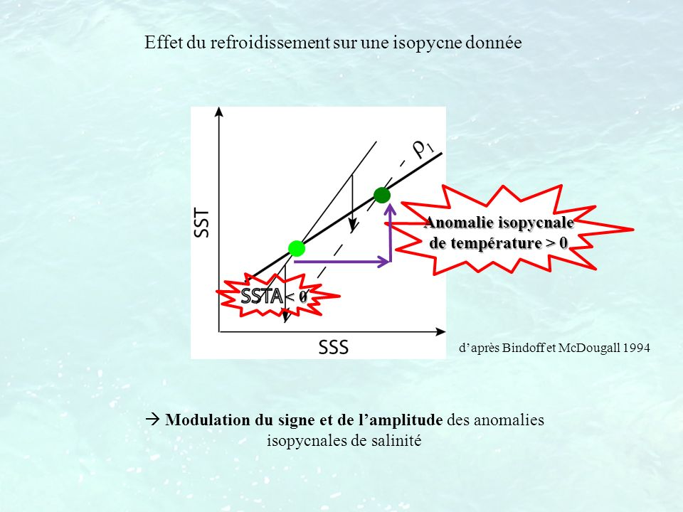 daprès Bindoff et McDougall 1994 Modulation du signe et de lamplitude des anomalies isopycnales de salinité Anomalie isopycnale de température > 0 Eff