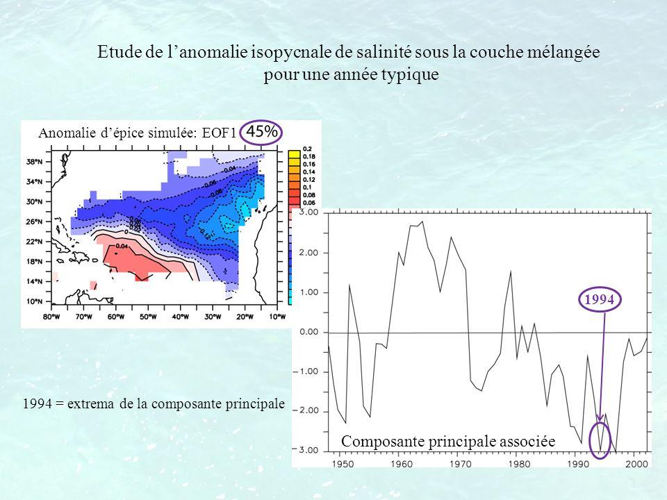 Etude de lanomalie isopycnale de salinité sous la couche mélangée pour une année typique Anomalie dépice simulée: EOF1 1994 1994 = extrema de la compo