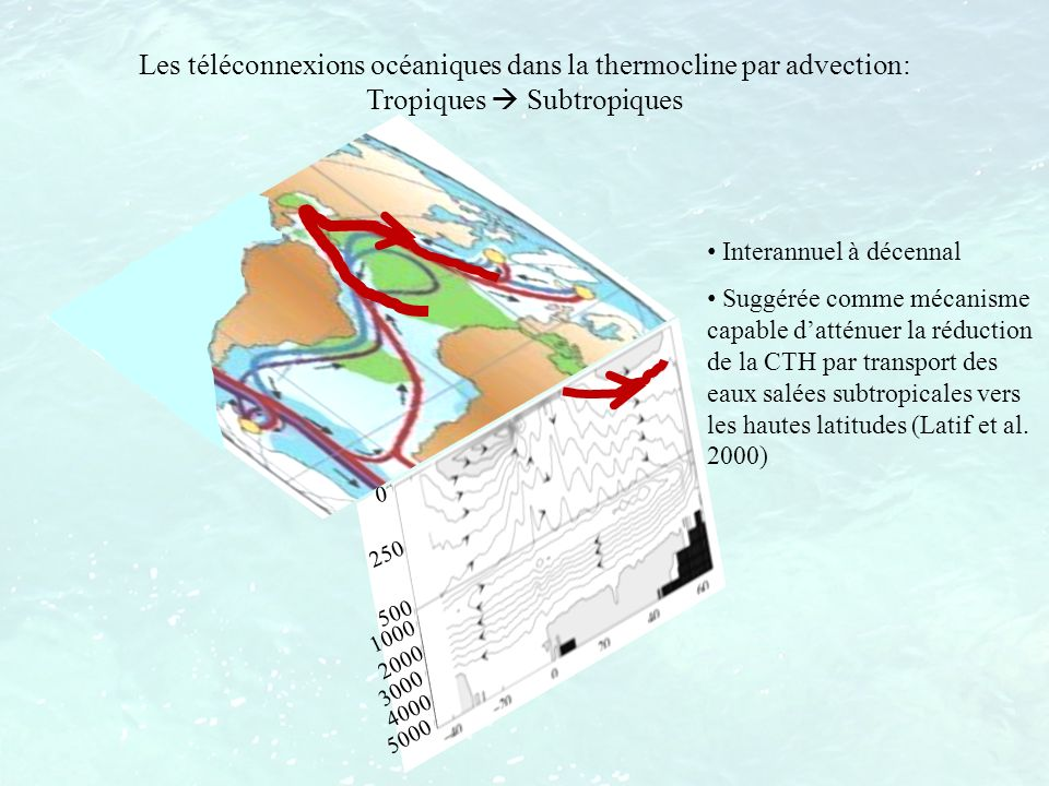Interannuel à décennal Suggérée comme mécanisme capable datténuer la réduction de la CTH par transport des eaux salées subtropicales vers les hautes l