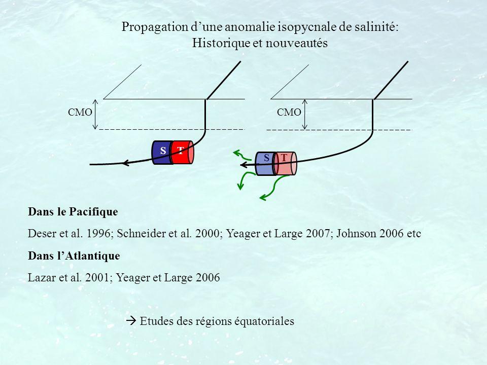 Dans le Pacifique Deser et al. 1996; Schneider et al. 2000; Yeager et Large 2007; Johnson 2006 etc Dans lAtlantique Lazar et al. 2001; Yeager et Large