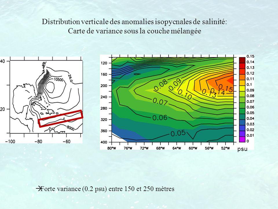 Distribution verticale des anomalies isopycnales de salinité: Carte de variance sous la couche mélangée Forte variance (0.2 psu) entre 150 et 250 mètr