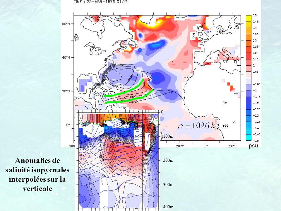 psu 0 100m 200m 300m 400m 0 Anomalies de salinité isopycnales interpolées sur la verticale