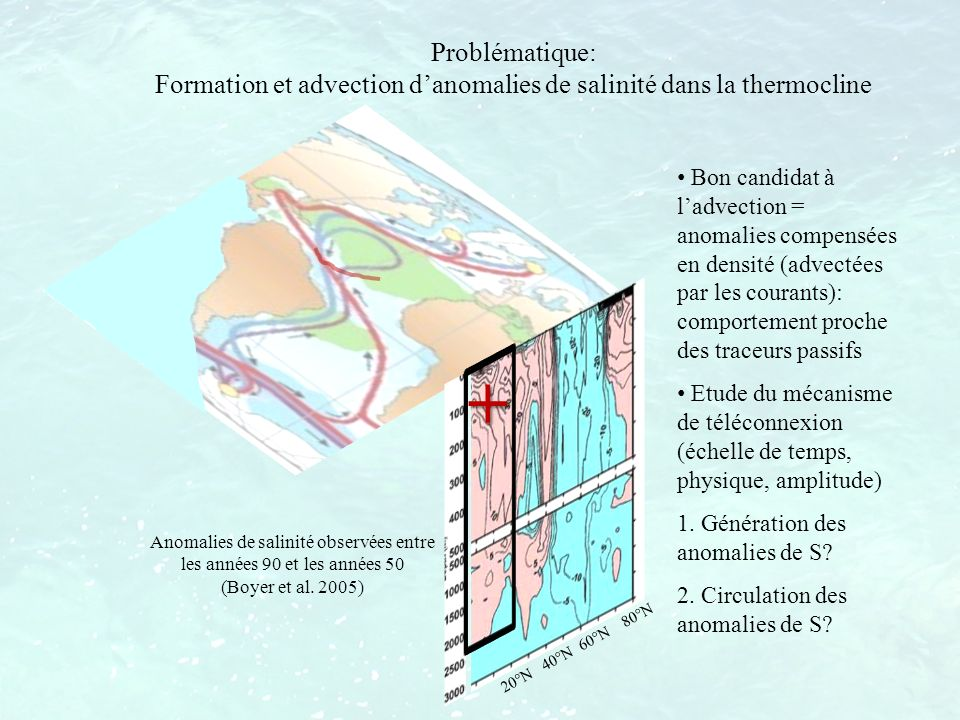 Simulation de contrôle HH20: SSS Couleur: HH20; Contours: HH20-WOA05 SSS anormalement faible en toute saison entre 40°N et 50°N psu