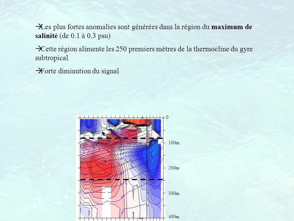Les plus fortes anomalies sont générées dans la région du maximum de salinité (de 0.1 à 0.3 psu) Cette région alimente les 250 premiers mètres de la t